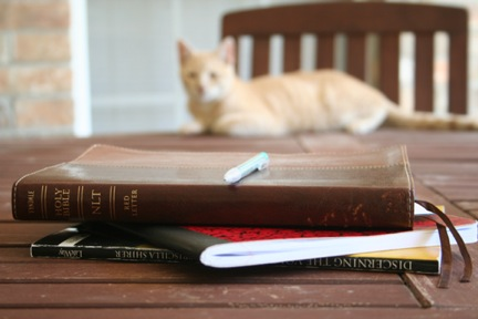 how to create a bible study lesson
