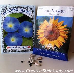 Creative bible study names